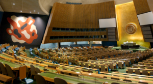 UN General Assembly Reports on Social Development