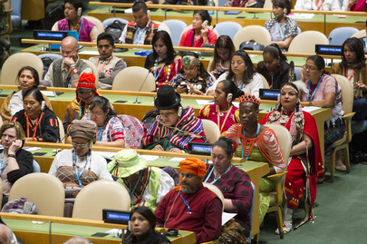 Permanent Forum on Indigenous Issues concludes with the adoption of the 15th session report