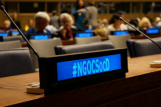 NGOs and the 55th Session of the Commission for Social Development - #CSocD55