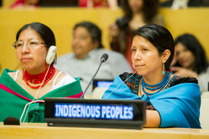 Participation of Indigenous Peoples at the UN 14-15 December 2016