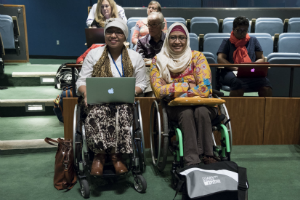 International Day of Persons with Disabilities (IDPD), 3 December 2017