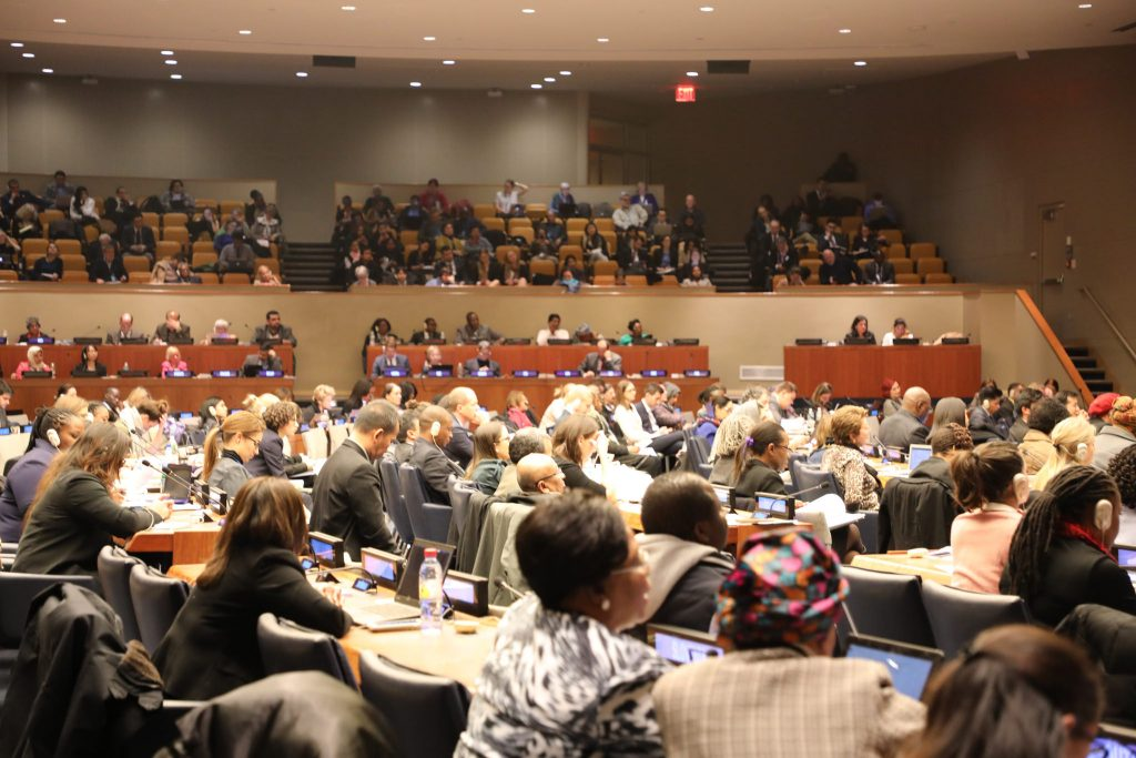 Report of the 56th Commission for Social Development (CSocD56)
