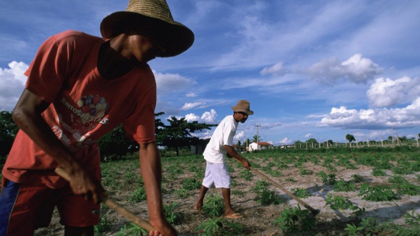 UN/DESA Policy Brief #107: Social protection in rural areas: achieving universal access for all
