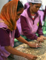 Role of cooperatives in eliminating poverty (UN Photo/Martine Perret)