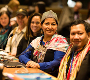 Expert Group Meeting on indigenous languages 2016