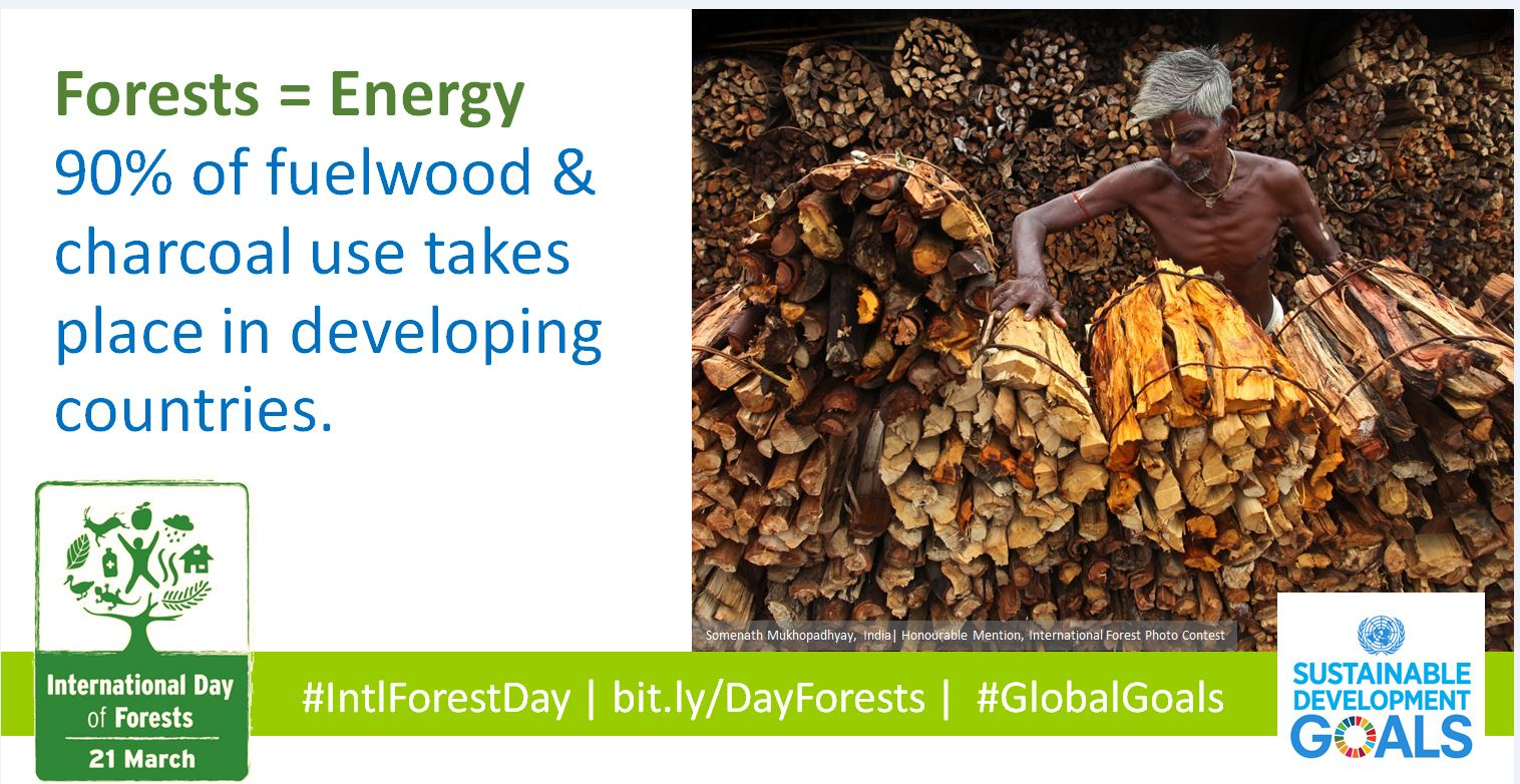 developing countries energy wood charcoal Fuel briquettes generated by the low-pressure compaction of paper, sawdust, agricultural or yard waste, etc currently serve as an alternative to firewood, wood pellets and charcoal in developing countries in africa, asia and south america.
