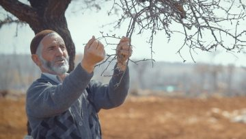Sustainable farming in Turkey bears fruit for everyone