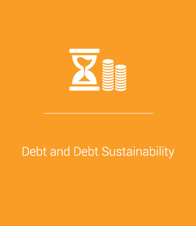Debt and Debt Sustainability