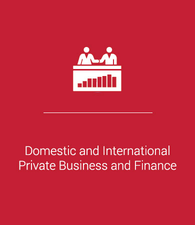 Domestic and International Private Business and Finance
