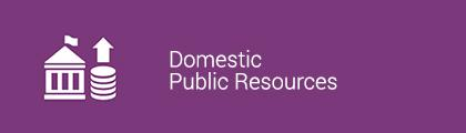 Domestic Public Resources