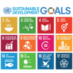 The Sustainable Development Goals (SDGs) and Indigenous