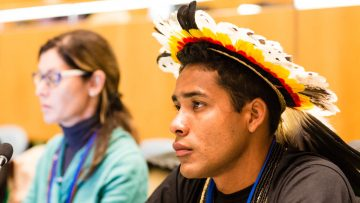 Rights of Indigenous Peoples' resolution adopted by the 3rd committee