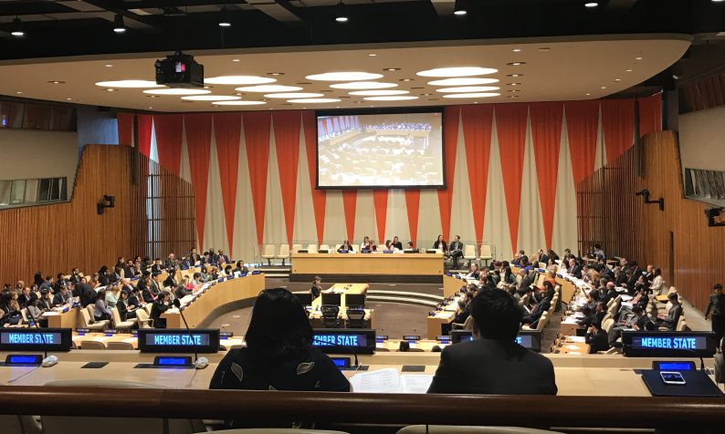 ECOSOC Elections of Government Nominated PFII Members 2020–2022