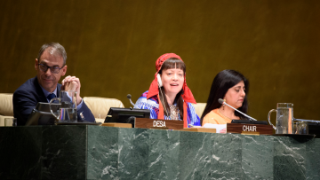 ECOSOC adopted draft decisions contained in the Report of the Forum (18th session, 2019)