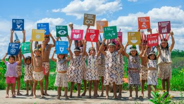 HLPF 2020: Indigenous Peoples' participation