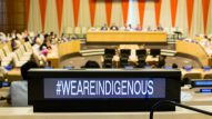 We are indigenous sign