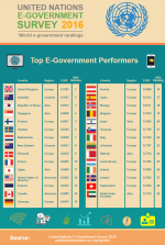 Top E-Government Performers