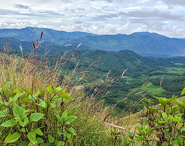 Western Ghats mountains in the state of Kerala in India