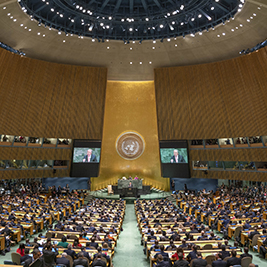 UN General Assembly kicks off work in Second and Third Committees