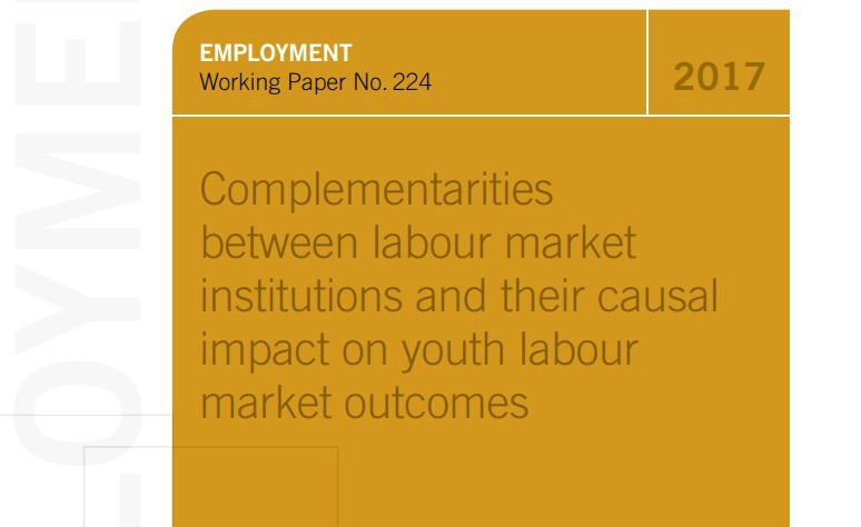 Complementarities between Labour Market Institutions and their Causal Impact on Youth Labour Market Outcomes