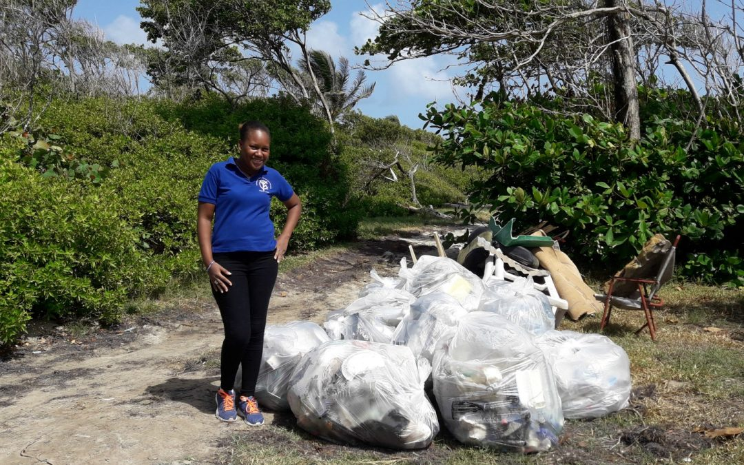 Climate Change and Pollution in the Caribbean by Snaliah Mahal