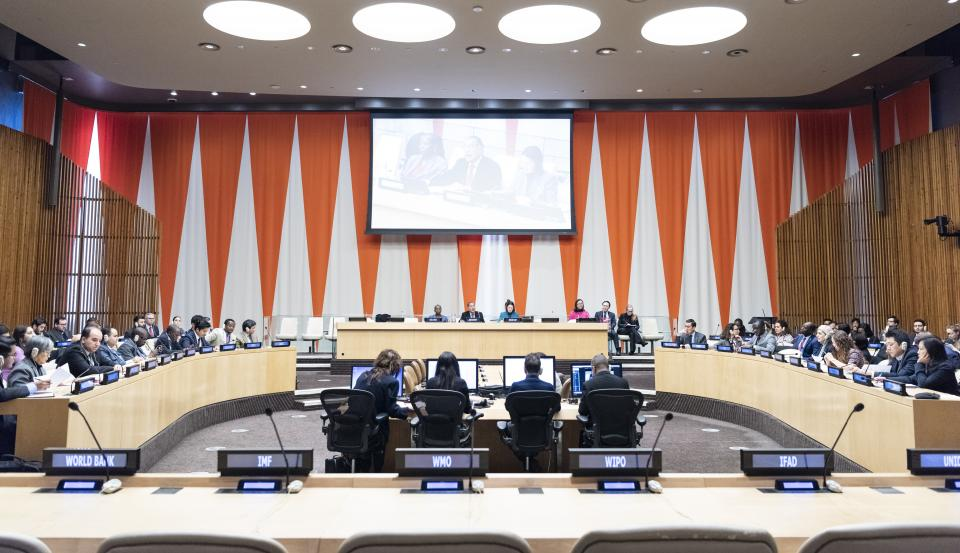 A wide view of the ECOSOC chamber. UN Photo/Rick Bajornas