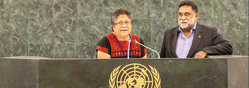 From the 13th session of the Permanent Forum on Indigenous Issues.Photo: Broddi Sigurdarson, United Nations