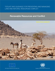 Renewable Resources and Conflict PDF Cover