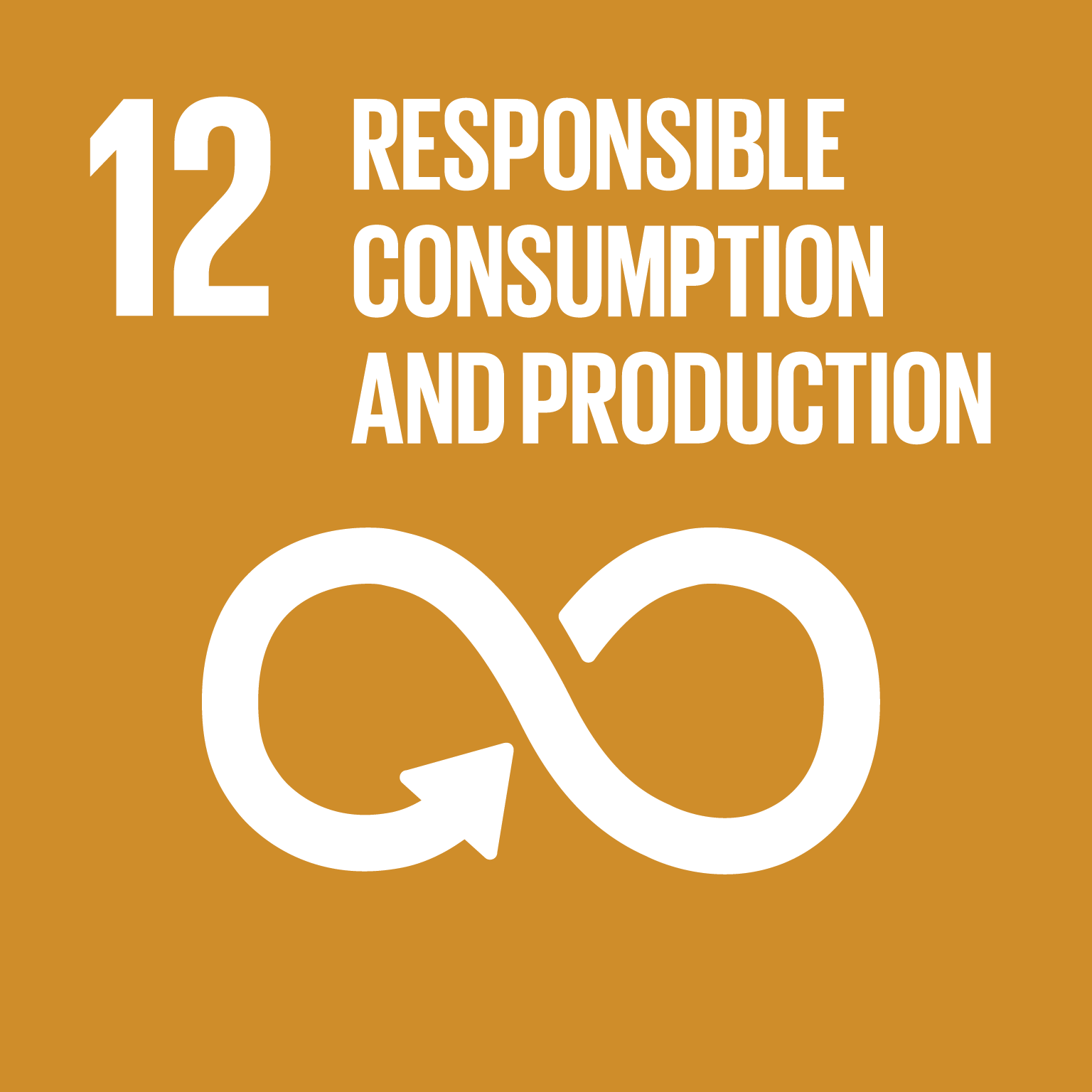 Goal 12  :  Sustainable Development Knowledge Platform