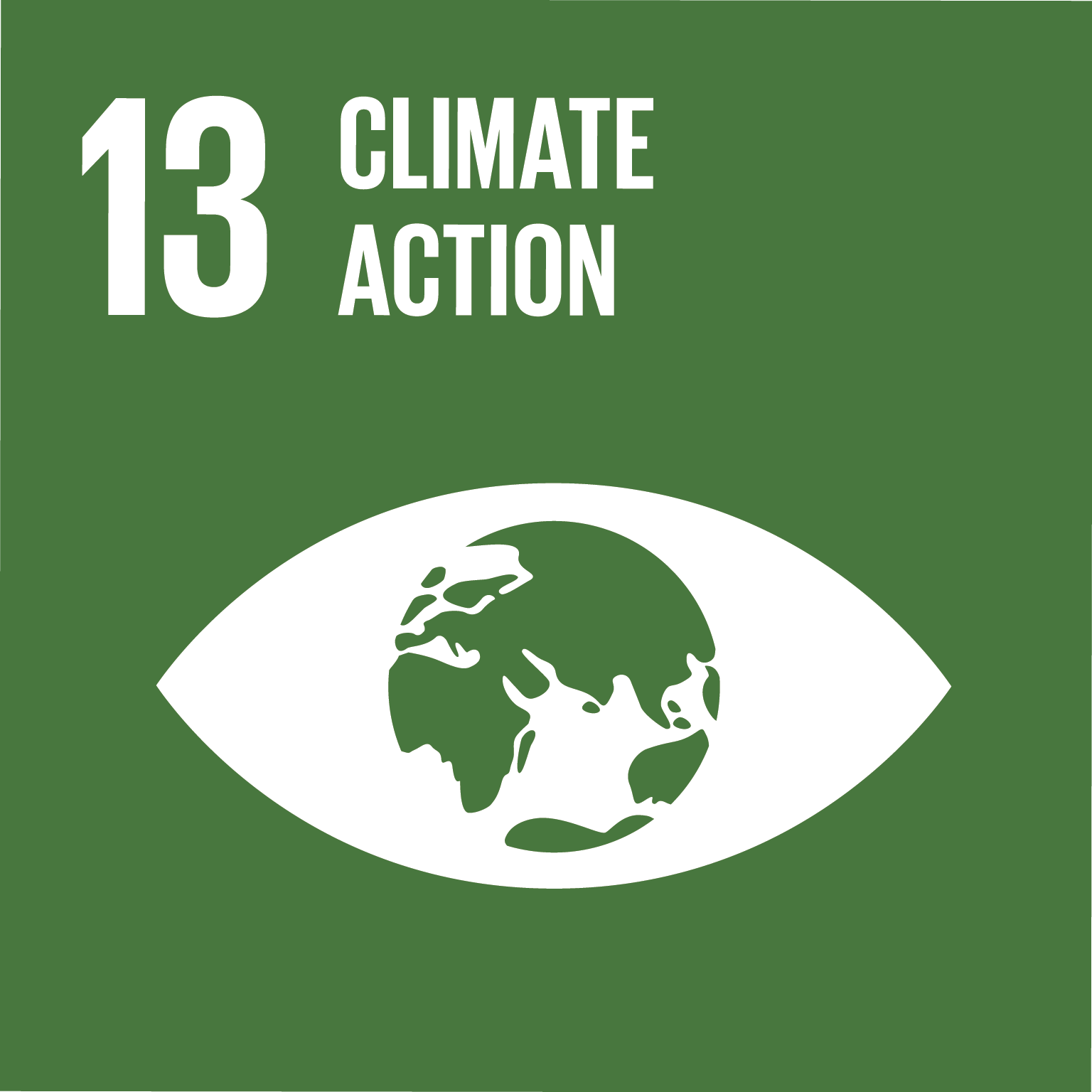 Afbeeldingsresultaat voor sustainable development goals 13