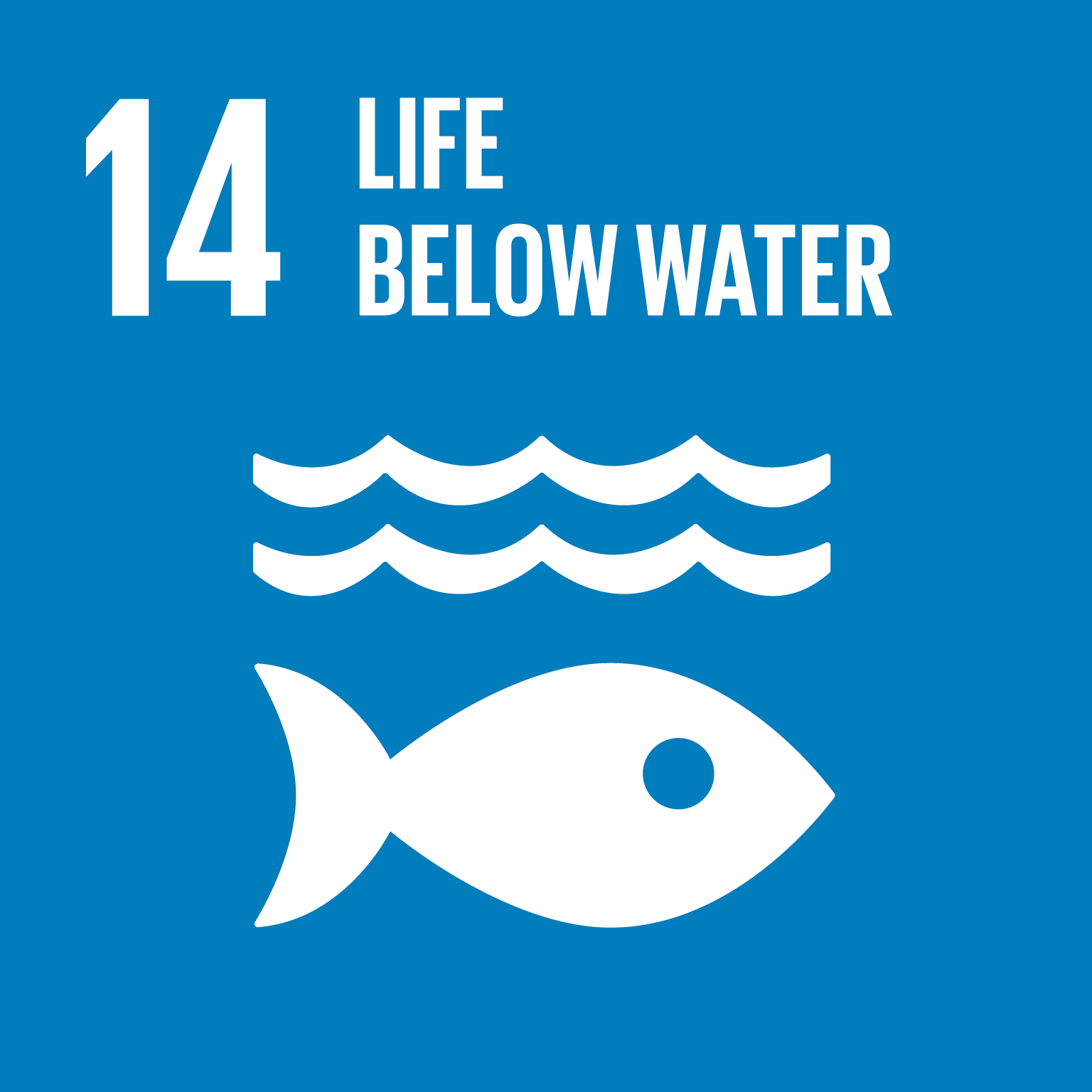 Afbeeldingsresultaat voor sustainable development goals 14
