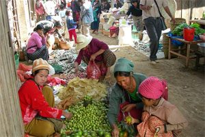 Women sit at the front of their market stalls in a market alley. They are selling fresh produce.