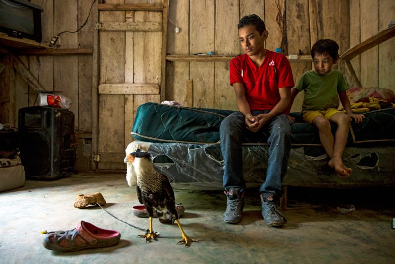A young boy and a child sit on a bed in a wooden house. There is an eagle on the floor, and two pairs of shoes.