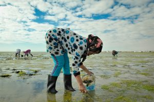 A woman stands in a shallow river and leans over as she places stones and shells into a plastic bucket. She is wearing gumboots. There are several other women standing in the river behind her.