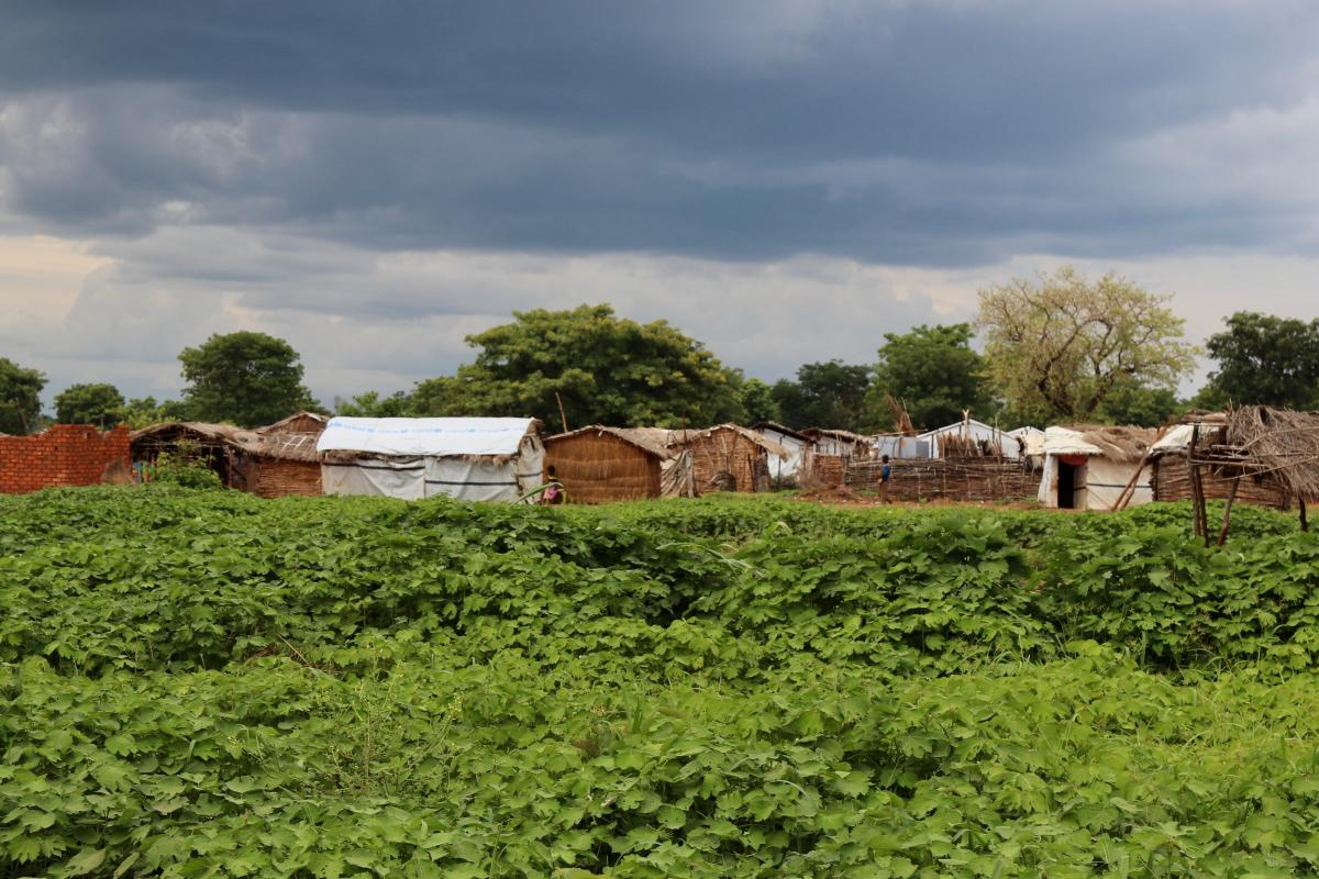 Chad: Dark clouds hang above a camp for returnees in the south of Chad.