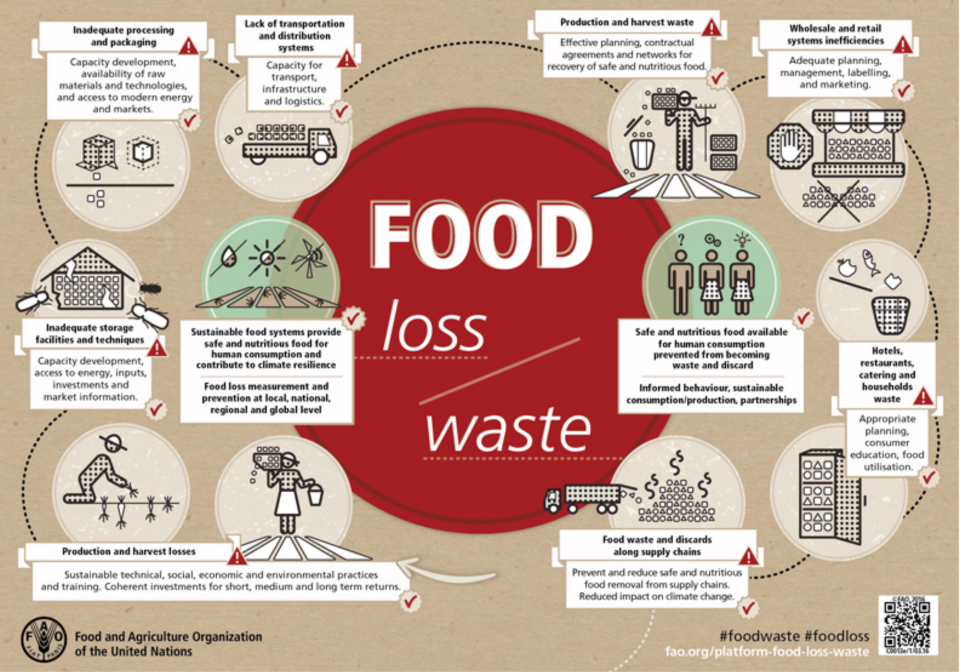 Front cover of an infographic on food waste.