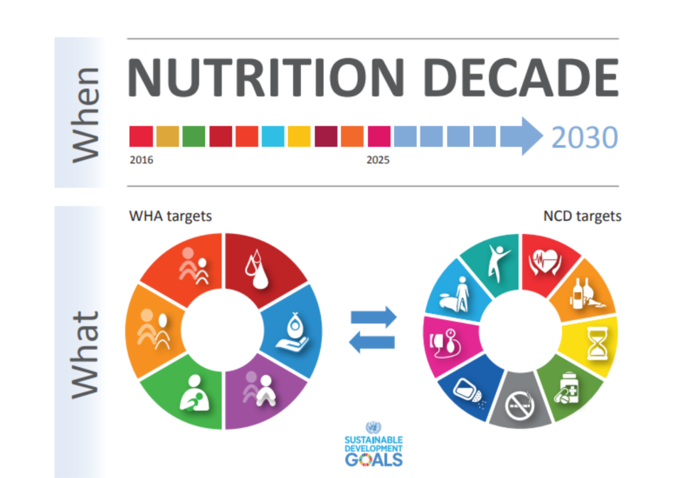 Front cover of an infographic on the Nutrition Decade.