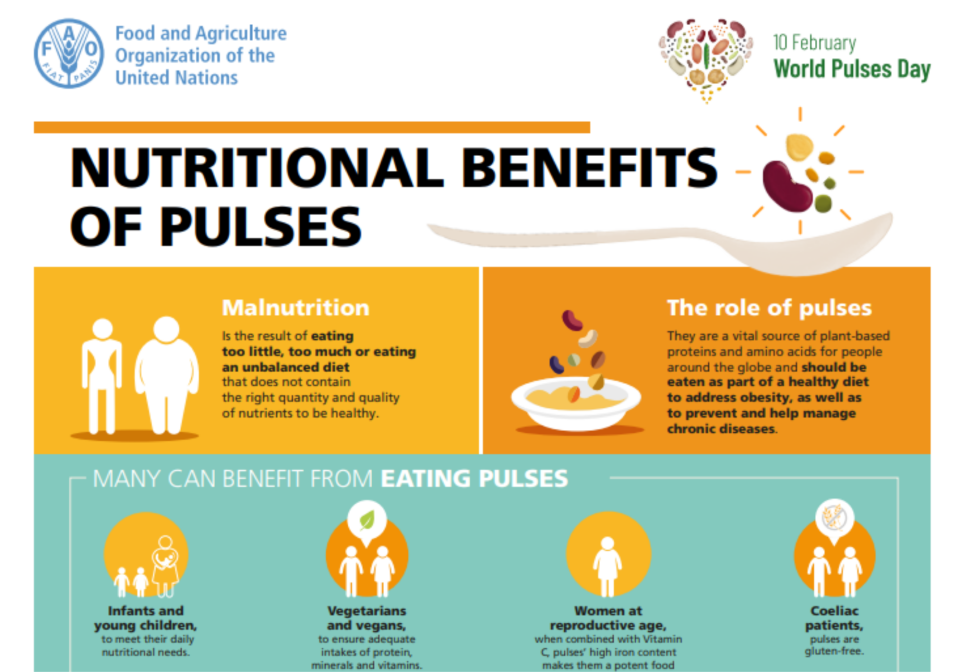 Front cover of an infographic on pulses.