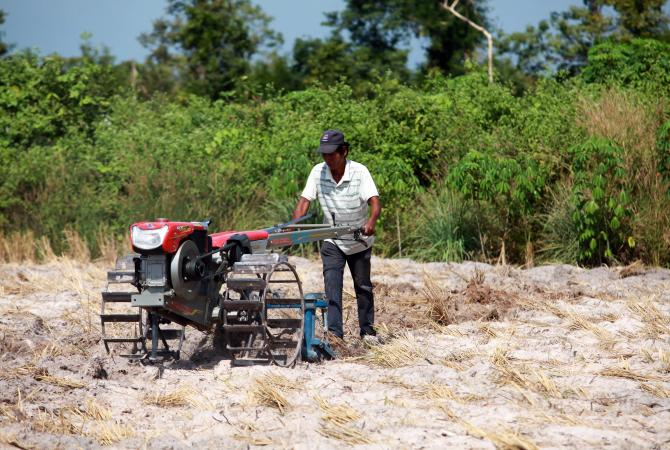 A Cambodian farmer prepares his field for the next crop.