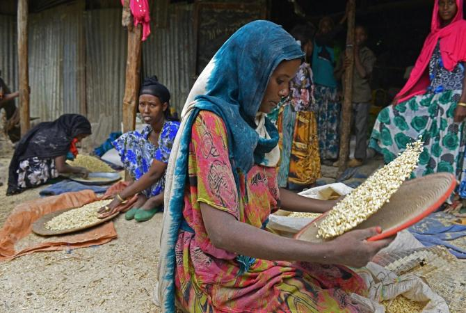 Women winnow corn, to remove the chaff before milling the crop in Ethiopia.