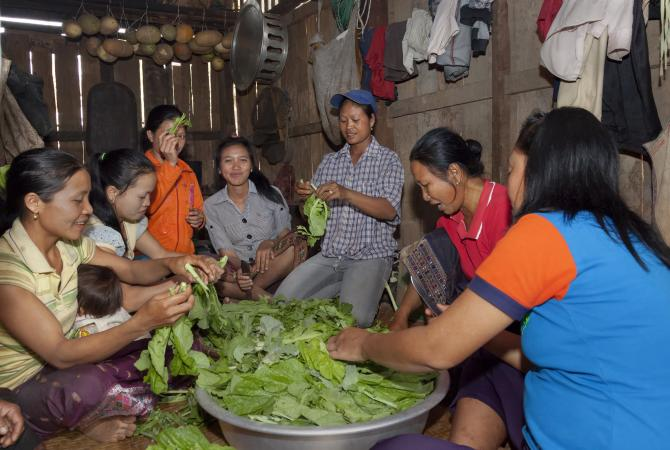 Local communities in Laos are contributing to a feeding program for primary school students by