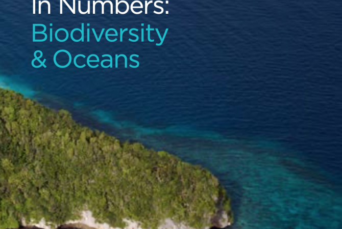 Small Island Developing States In Numbers: Biodiversity & Oceans (2017)