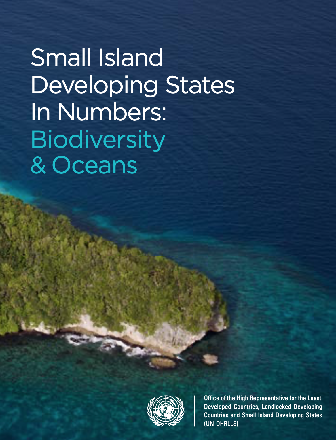 Cover of Small Island Developing States In Numbers: Biodiversity & Oceans (2017)