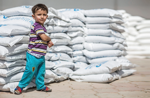 A boy stands in front of supplies at a WFP distribution site in Erbil Governorate, Iraq. WFP received $6 million from CERF for its emergency operations in Iraq in 2014. © OCHA/Iason Athanasiadis