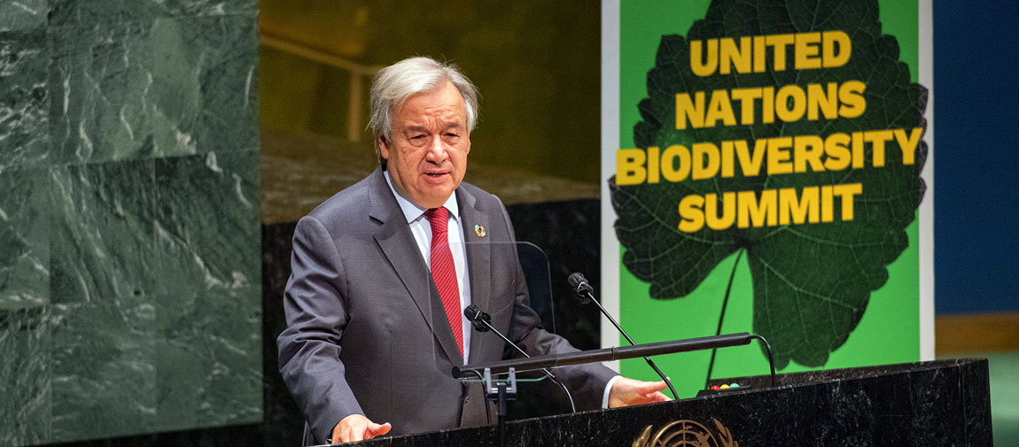 Secretary-General António Guterres addresses the United Nations Summit on Biodiversity. UN Photo/Rick Bajornas