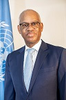 El Ghassim  Wane Special Representative of the Secretary-General for Mali and Head of the United Nations Multidimensional Integrated Stabilization Mission in Mali