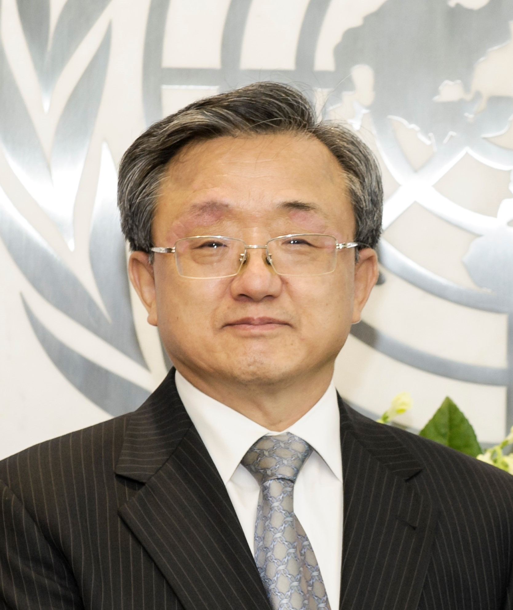 Liu Zhenmin Under-Secretary-General for Economic and Social Affairs