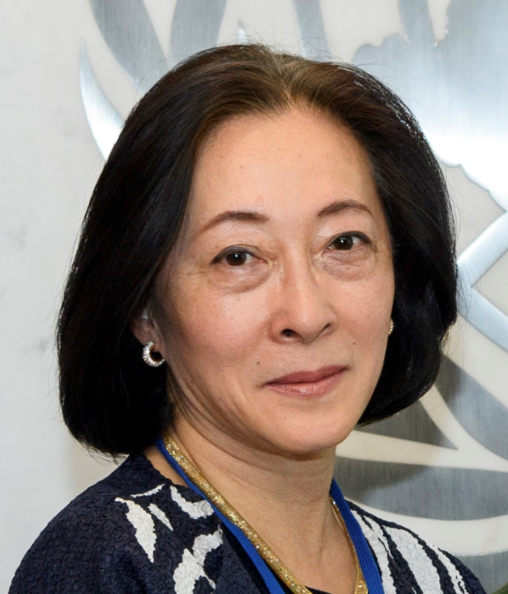 MIZUTORI  Mami Special Representative of the Secretary-General for Disaster Risk Reduction