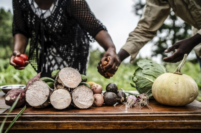 farmers' hands with produce
