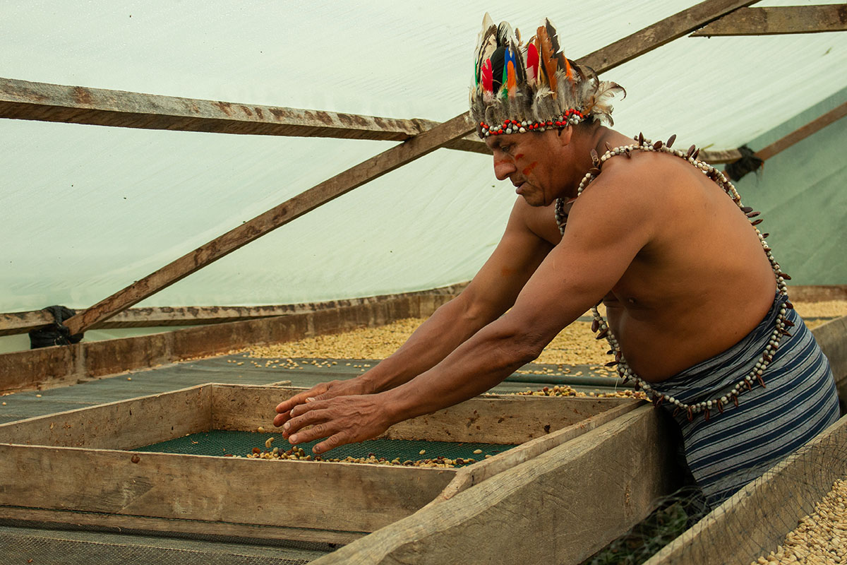 man in indigenous dress drying coffee beans